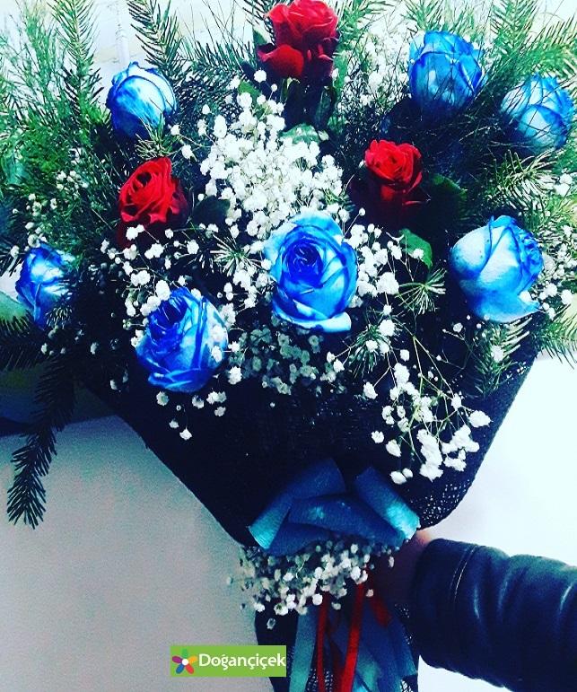 Mavi Büyülü Güller