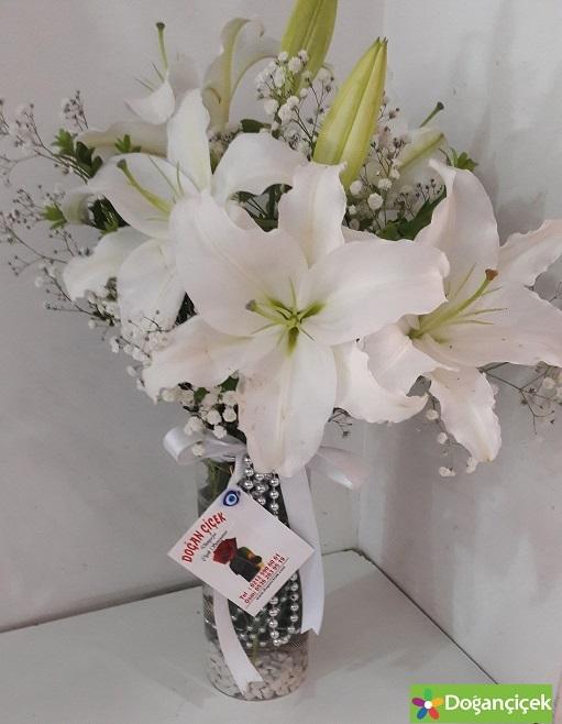 Silindir Vazolu Lilyumlar avcılar çiçek
