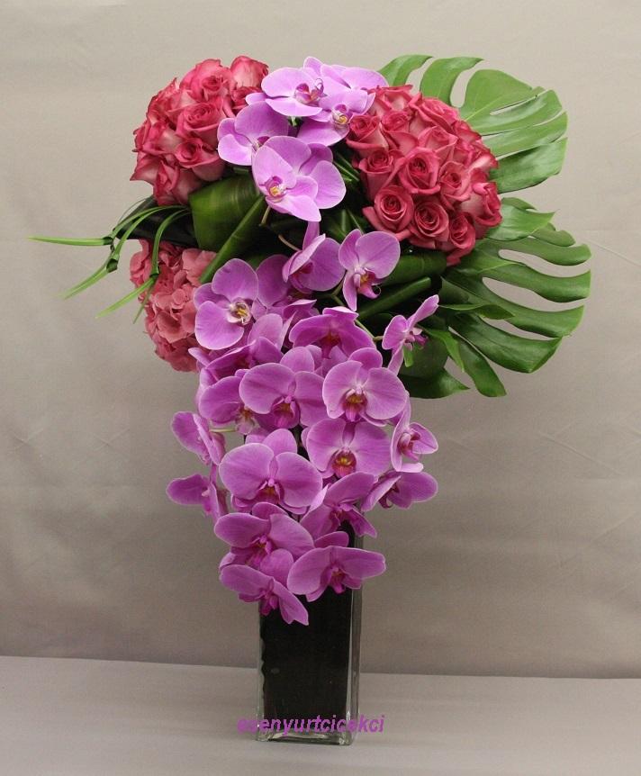 Mor Orkide Gül